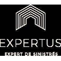Cabinet Expertus Logo